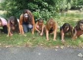 Drôle de Tribu !