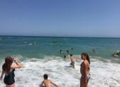 Ils y sont … à la plage !!!