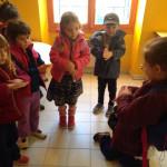 Animaux et Citrouilles à Saint Michel