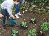 Un Jardin à Ornolac Ussat les Bains
